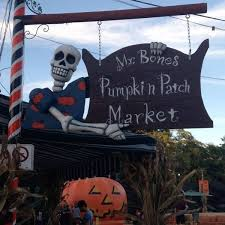 Pumpkin Patch Pasadena Area by Best Pumpkin Patches In Los Angeles Axs