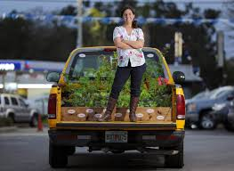 How Does Her Garden Grow? In The Back Of A Truck | Tbo.com Pickup Truck Gardens Japanese Contest Celebrates Mobile Greenery Solar Planter Decorative Garden Accents Plowhearth Stock Photos Images Alamy Fevilla Giulia Garden Truck Palermo Sicily Italy 9458373266 Welcome Floral Flag I Americas Flags Farmersgov On Twitter Not Only Is Usdas David Matthews Bring Yellow Watering In Service The Photo Image Sunflowers Paint Nite Pinterest Pating Mini Better Homes How Does Her Grow The Back Of A Tbocom