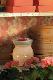 Pumpkin Scentsy Warmer 2014 by 94 Best High Quality Scentsy Images Images On Pinterest
