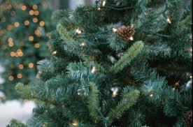 Fortunoff Christmas Trees 2013 by Christmas Tree Generic Up Close Jpg W U003d300 U0026h U003d198