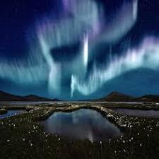 Northern Lights Vapor Co Vanillawesome e scoop Vanilla one