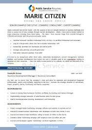 Professional Resume 126 Public Service