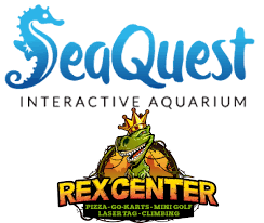 COOL Summer Fun With Rex Center & SeaQuest Las Vegas Kids And Sharks A Fun Morning At Seaquest Las Vegas Vintage Blue Under The Sea Interactive Aquarium Discount Tickets New Attraction Comes To Planned For River Ridge Mall In The Salt Project Things Do Planned Aquarium Folsom Faces Community Opposition Deal Now Valid All Summer Admission Tickets Or Ultimate Experience Package Certifikid Seaquests Problems Extend Beyond Discount Opening United Moms Network Quest Coupons Mk710 Deals