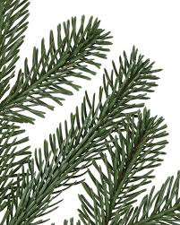 Which Christmas Tree Smells The Best Uk by Bh Nordmann Fir Artificial Christmas Tree Balsam Hill