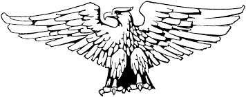 Eagle Coloring Pages 7334