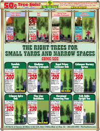 Christmas Tree Permits Durango Colorado by Home Thetreefarm Com
