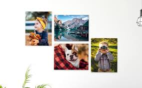 8x10 Canvas Voucher Manage Coupon Codes Canvas Prints Online Prting India Picsin Photo Buildasign Custom To Print 16x20 075 Wrap By Easy Photobox The Ultimate Black Friday Guide 2018 Fundy Designer Simple Rate My Free Shipping Code Canvas People Suregrip Footwear Coupon Pink Coral Alphabet Animals Canvaspop Vs Canvaschamp Comparing 2 Great