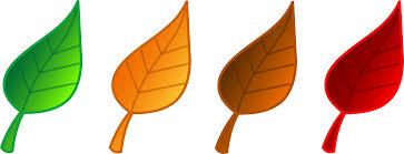 Clip Art Fall Leaves