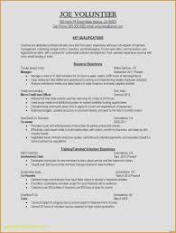 Resume Writers Nyc / Peopleforcarlandrews