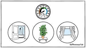 luftfeuchtigkeit erhöhen für ideale luft in wohnräumen