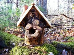 Image Of Rustic Decorative Bird Houses