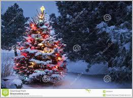 Fiber Optic Christmas Tree Walmart Canada Pretty Stands Cinco Plastics Express