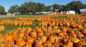 Bengtson Pumpkin Farm Chicago by Fall Festivals And Oktoberfests 2017 Kidlist U2022 Activities For Kids