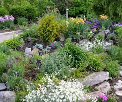 Plants For Shaded Rock Gardens | Home Outdoor Decoration Courtyard On Pinterest Shade Garden Backyard Landscaping And 25 Unique Garden Ideas On Landscaping Spiring Shade Designs Best Plants For Shaded Beautiful Small Flower Bed Ideas Arafen Front Yard Stone Borders Landscape Design Without Grass Sunset Shady Backyard Landscapes Backyards And Rock Satuskaco Buckner Butler Tarkington Neighborhood Association Great Paths Amazing With Gravels Green