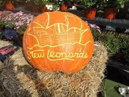 Stew Leonard Danbury Ct Christmas Trees by Halloween Hayride Spooktacular At Stew Leonard U0027s Danbury Kids