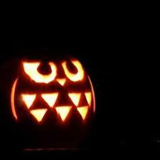 Cute Pumpkin Carving Ideas by Happy H Owl Oween Owl Pumpkin With Pumpkin Seeds Halloween