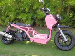 Maui Scooter Shack Is Hawaiis EXCLUSIVE Pit Bull Dealer The Exclusively Made For Hawaii Laws And Regulations As A 49cc Moped