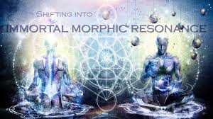 Morphic Resonance Fields Collective Memory The Habits Of Nature By DR