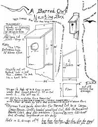 Amazing Barn Owl House Plans Gallery - Best Idea Home Design ... Common Barnowl Tyto Alba Two Juvenile Common Barn Owls At The Pramo Clothing Owling In Owls Glenn County Resource Cservation District Barn Owl Nest Box Nhbs Wildlife Shop Gardening For Birds All About Nesting Logs And Boxes Hecker Nursery Triangular Girl Scout Gold Award Benefits Birds Burroughs Audubon Society Boxes Hungry Project Bbook Mount Gravatt Environment Group Wiggly Wigglers Duhallow Raptor Plans Vip