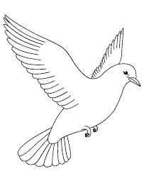 Printable Bird Coloring Pages For Kids
