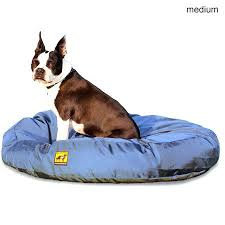 tough chew dog beds restate co
