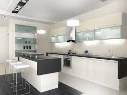 Black White And Glass Modern Kitchen