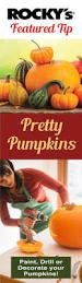 Natural Fertilizer For Pumpkins by 37 Best Bug Off Images On Pinterest
