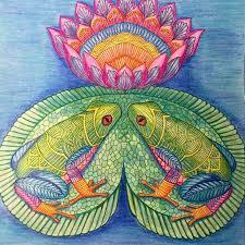 Deanna T Au On Instagram Tropical Frogs Adult ColoringColoring BooksMuseumTropical ParadiseJohanna BasfordMarieCreative ArtSecret GardensInstagram
