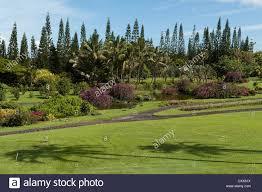 Elk284 2113 Hawaii Big Island Hilo Nani Mau Gardens Stock