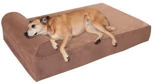 furnitures coolaroo dog bed elevated pet beds best elevated