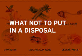 Sink Food Disposal Not Working by What Not To Put In A Garbage Disposal Insinkerator