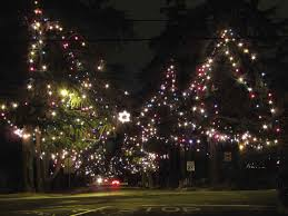 This Years Tree Lighting Ceremony On Christmas Lane Took Place Dec 9 The Cedars Will Be Illuminated Through New Night And Lit Again