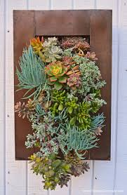 Wall Art Splendid Design Succulent Living With Garden Plants Shawna Coronado Marvellous