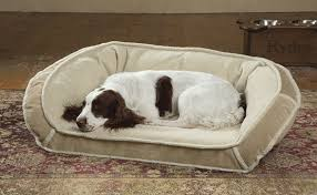 Kirkland Dog Beds by Tempur Pedic Dog Bed Reviews Home Beds Decoration