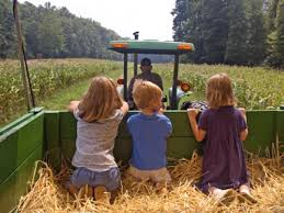 Pumpkin Picking Farm Long Island Ny by Top 5 Apple Picking Farms In The U S Travel Channel