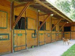 Shed Row Barns For Horses by 33 Best Shedrow Barns Images On Pinterest Dream Barn Horse