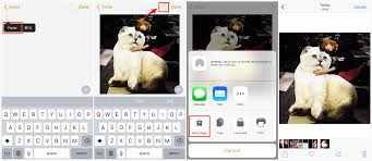 Easiest Way to Save Instagram s on iPhone iPad