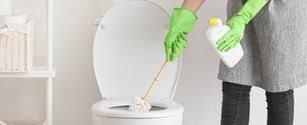 toilette stinkt nach urin oder kanal jetzt für frischen