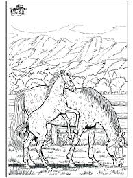 Coloring Pages Of Horses Jumping Realistic Horse Books And Colouring To Print