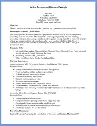 18 Account Resume Format