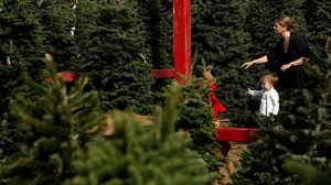 Types Of Live Christmas Trees by Why Your Christmas Tree May Cost More This Year La Times