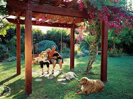 Landscaping For Dogs - Sunset Dog Friendly Backyard Makeover Video Hgtv Diy House For Beginner Ideas Landscaping Ideas Backyard With Dogs Small Patio For Dogs Img Amys Office Nice Backyards Designs And Decor Youtube With Home Outdoor Decoration Drop Dead Gorgeous Diy Fence Design And Cooper Small Yards Bathroom Design 2017 Upgrading The Side Yard