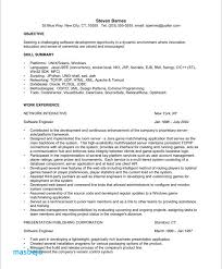 Professional Summary Resume Examples For Software Developer Engineer Format Experienced Sample