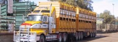 100 Livestock Trucking Companies Transport Webinars To Address Qld Changes Farming Ahead