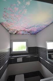 bedruckte spanndecke im wc bad toilette spanndecke wc