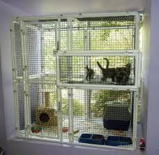 cats on deck animal radio r show 633 january 21 2012