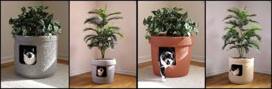 best cat litter boxes litter textured cat boxes by pest best products