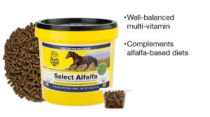 Select Alfalfa - SmartPak Equine Healthe Maximum Strength Vitamin E For Horses Equine Medical Pregnant Kim Kardashian Natural Glow At The Barns Photo 212 Best Paleo Salad Recipes Images On Pinterest Salad Vitaminbarn Your Savings Dashboard Walmarts Catcher 513 Miniaadventurefairy Garden Ideas From Barn Horse Supplements Farnam Amazoncom California Immunity Shots 4 Fluid Ounce Gel Capsules A Fish Oil Primrose Rice O Generic B Complex Fortified Leedstonecom