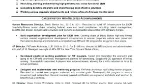 Examples Of Best Resumes Small Business Owner Resume Sample Elegant Executive Example