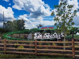 Bengtson Pumpkin Farm Chicago by Barnyard Dance Cow Coaster Bengtson U0027s Pumpkin Farm